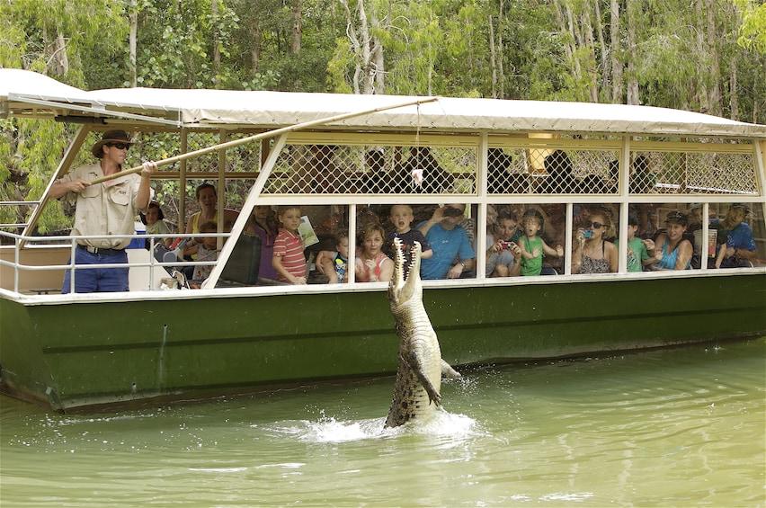 Charger l'élément 5 sur 5. Hartley's Crocodile Adventures Half-Day Tour