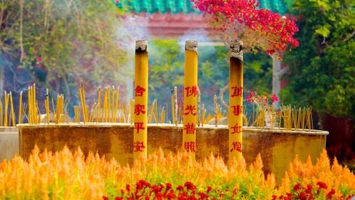 Lantau Island & Tian Tan Buddha Full-Day Excursion