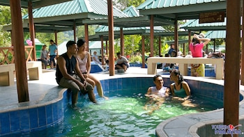 Private Kinabalu Park & Poring Hot Springs Full-Day Venture
