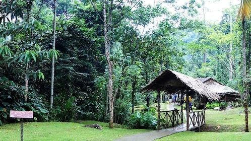 small walking trail in Kota Kinabalu