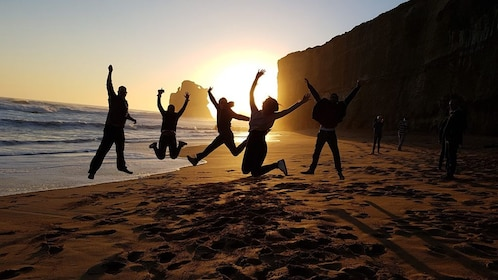 Great Ocean Road and 12 Apostles Sunset Small Group Tour