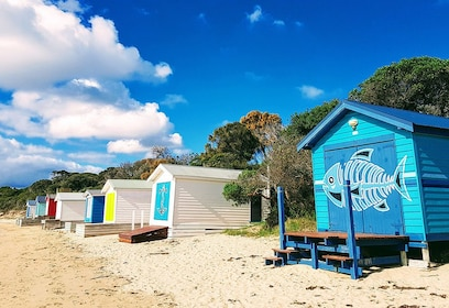 Bathing Boxes mornington peninsula.jpg