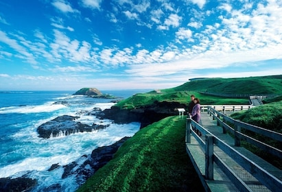 Phillip Island Ultimate Eco Tour from Melbourne