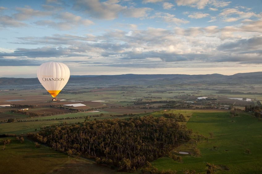 Show item 5 of 9. Yarra Valley Sunrise Hot Air Balloon Flight