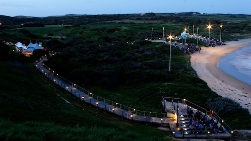 Crowds gather on beachside platforms to observed the penguin march at dusk on Phillip Island