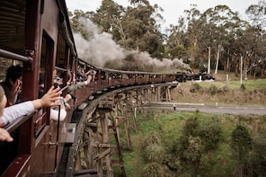 Puffing Billy and Yarra Valley with Lunch by Gray Line