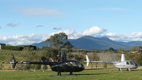 Pair of helicopters in a field in Melbourne