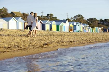 Wildlife Tours Australia - Mornington Peninsula 2.jpg