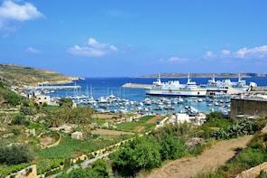 Excursie naar Gozo met lunch