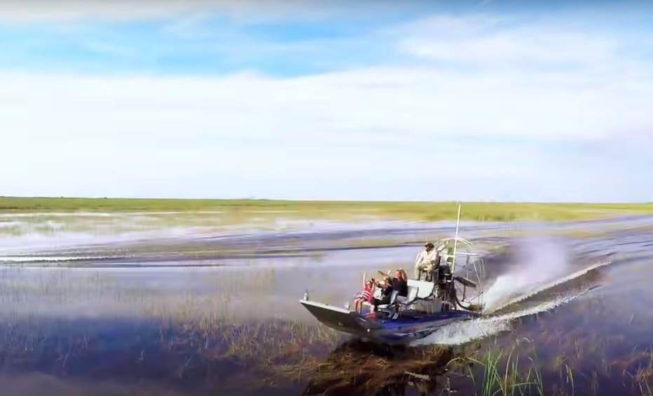 Show item 2 of 9. Everglades Airboat Adventure and Animal Sanctuary Admission