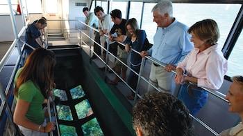 Croisière écologique en catamaran à fond vitré