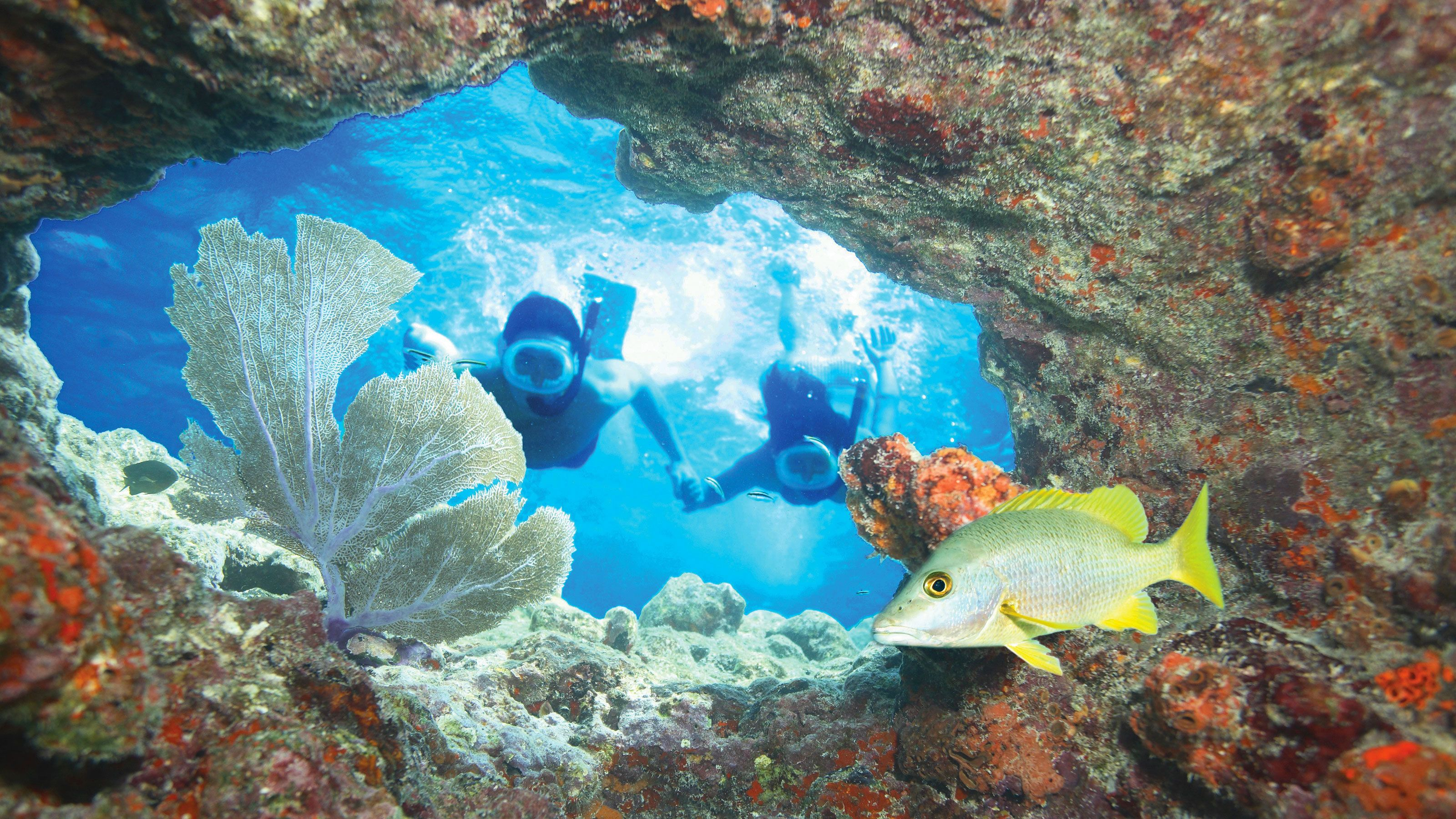 Snorkeling couple swimming towards the ocean floor at Key West