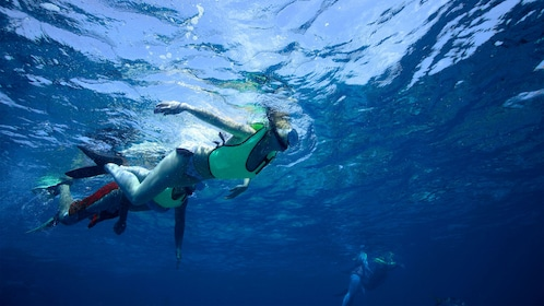 Snorkelers exploring the waters at Key West