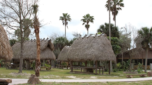 Fort Lauderdale Billie Swamp Safari and Airboat Ride