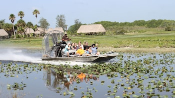 Swamp Safari & Airboat Ride
