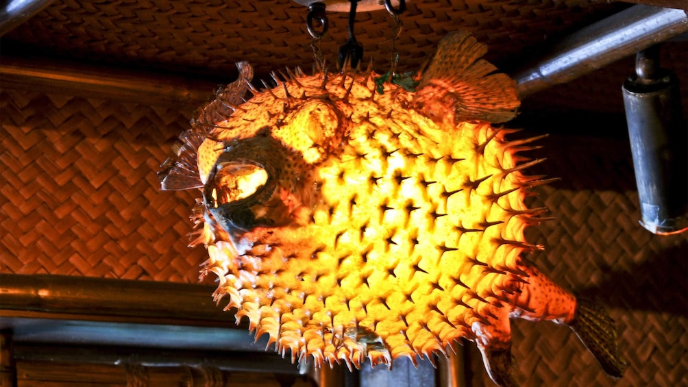 Show item 3 of 10. Pufferfish lamp at the Mai Kai Polynesian Dinner Show in Fort Lauderdale