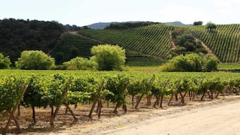 FULL DAY VALLEY OF COLCHAGUA