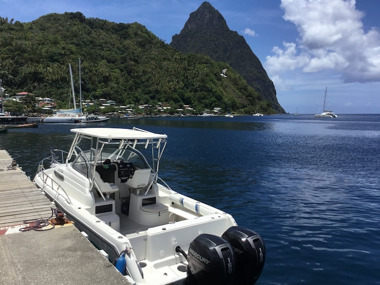 Show item 5 of 10. Soufriere/West Coast, Swim, Snorkel & Beach by Private Boat