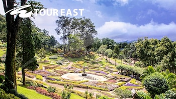 Doi Tung & Royal Villa Half-Day Tour