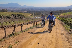 Electric Bike Winelands half day tour