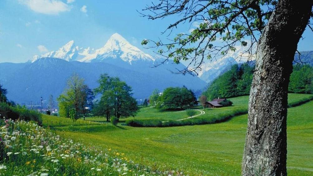 Foto 5 von 5 laden Alps and greenery in Berchtesgaden