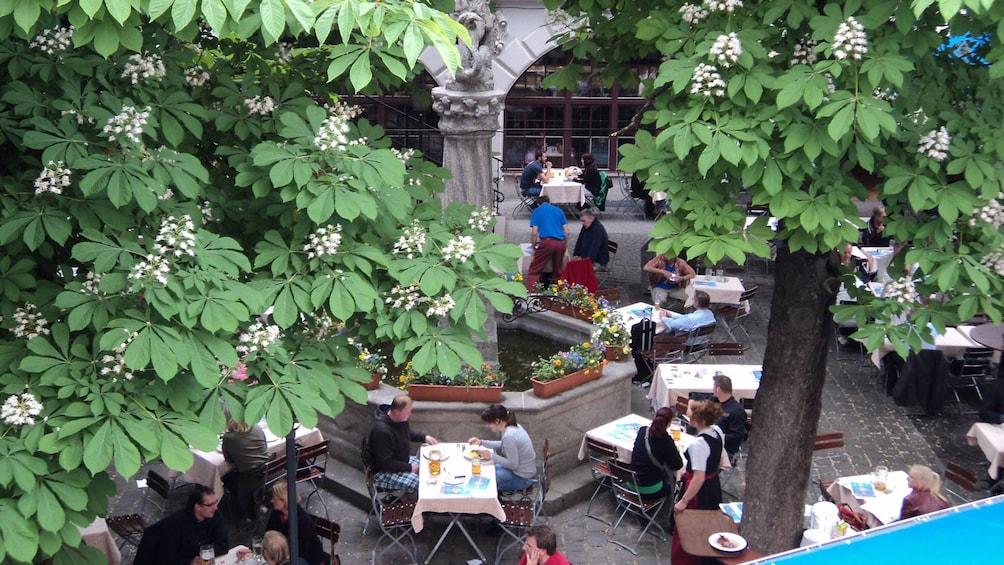 Foto 5 von 5 laden Beer garden in Munich
