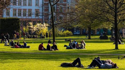 Locals getting some sunlight on the grass in Copenhagen