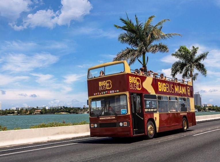 Carregar foto 4 de 11. Miami Hop-On Hop-Off Big Bus Tour