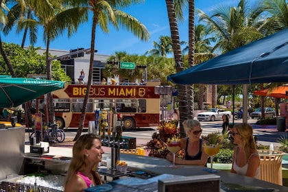 Miami Hop-On Hop-Off Big Bus Tour