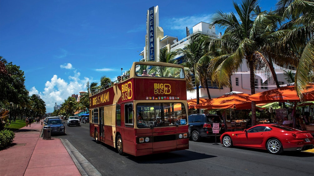 Show item 1 of 8. Double decker bus traveling down the road in Miami