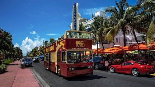 Double decker bus traveling down the road in Miami