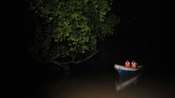 Show item 3 of 8. Boat in the darkness search for fireflies in Kuala Lumpur
