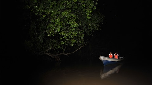 Boat in the darkness search for fireflies in Kuala Lumpur