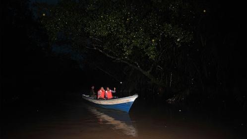 People in boat viewing fireflies in Kuala Lumpur