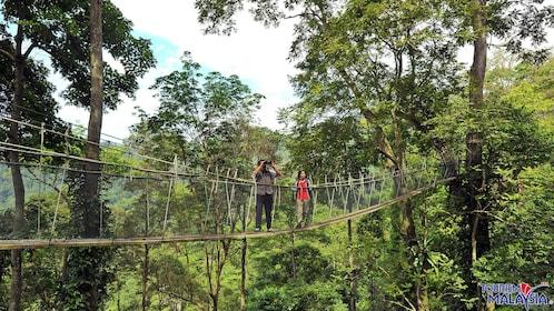 rope bridge in kuala lumpur