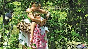 Tour zum Vogelpark, Schmetterlingspark und Orchideengarten von Kuala Lumpur