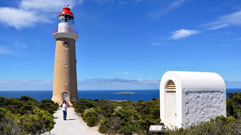 Show item 5 of 5. A light house on Kangaroo Island