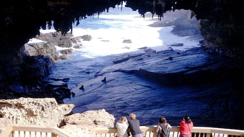 Admirals Arch on Kangaroo Island