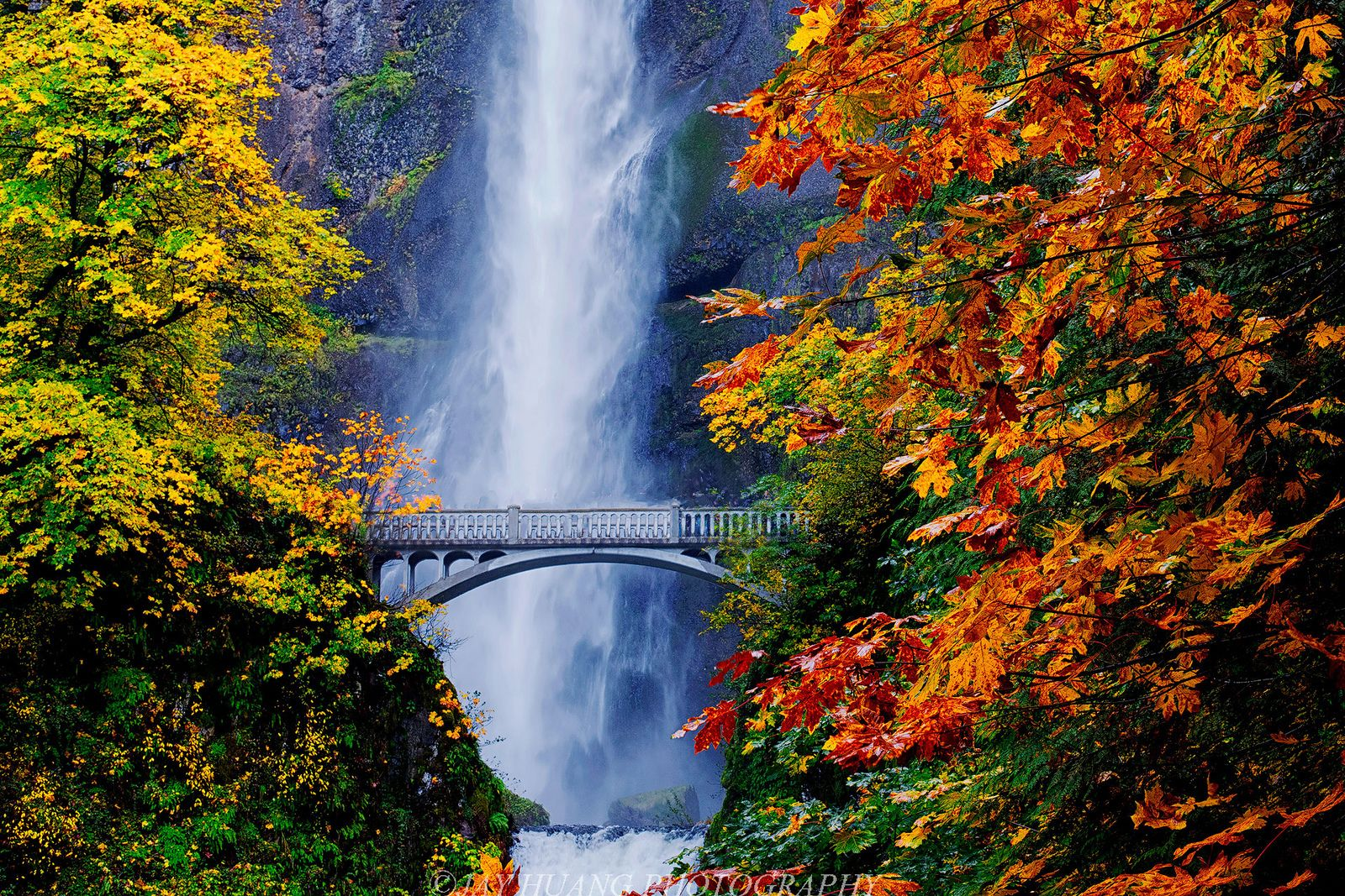 Columbia Gorge Wine & Waterfall Afternoon Tour from Portland