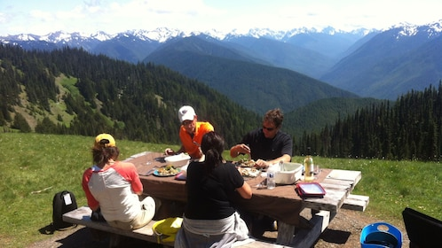 People having a picnic in the Olympic National Park in Washington