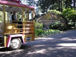 Harmaan linjan hop-on hop-off -kiertoajelu raitiovaunulla Portlandissa