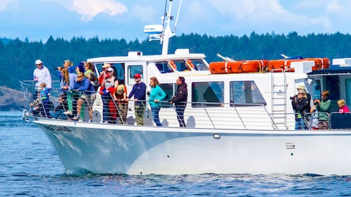 Whale watching boat full of people