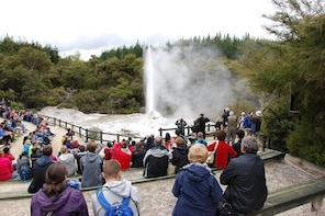 Private Tour Waiotapu Geothermal Shore Excursion up to 8 passengers