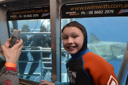 White Shark Tour with optional Cage Dive