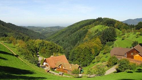 countryside view in Frankfurt