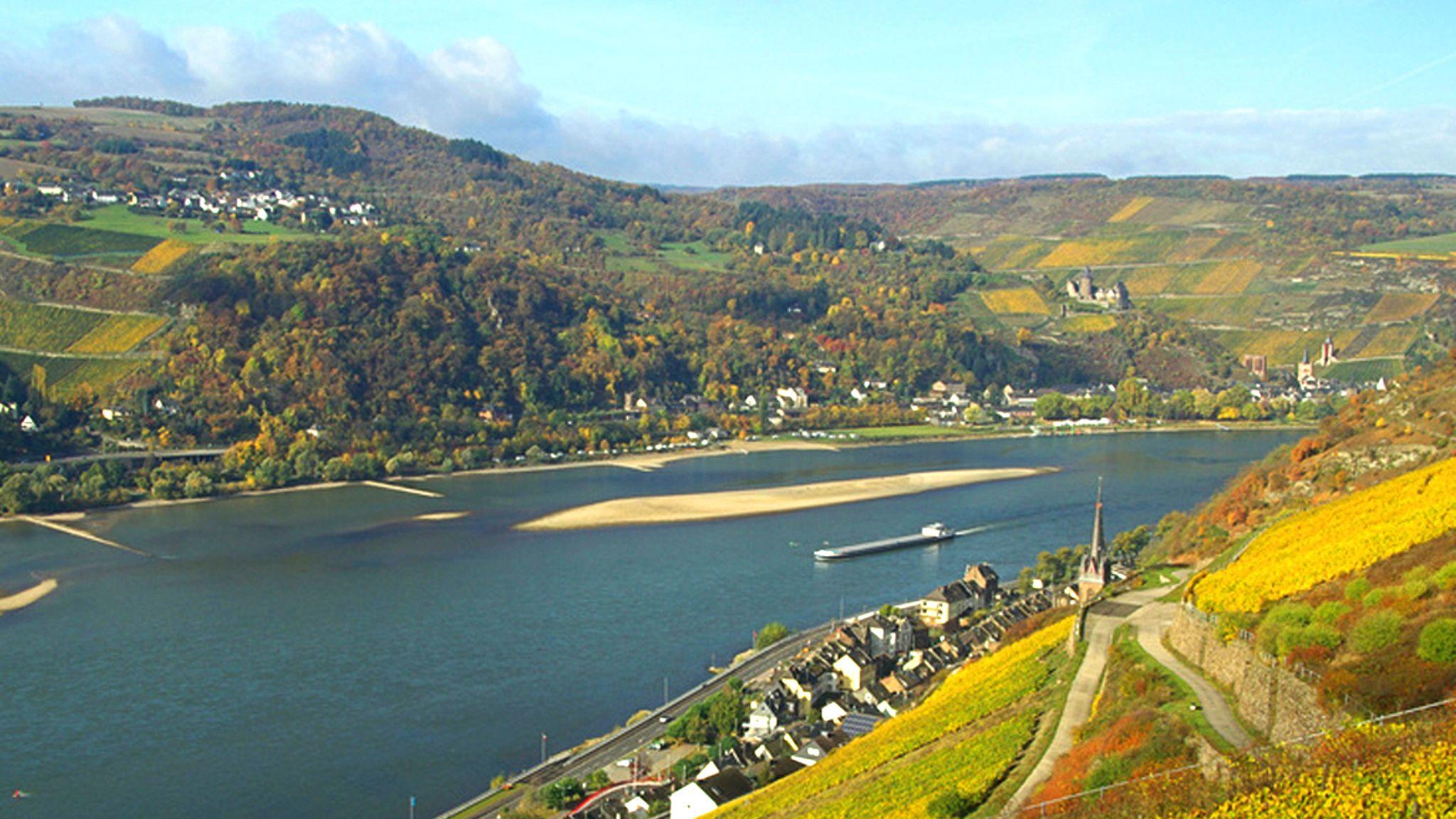 Visite de la ville et de la vallée du Rhin avec croisière, dégustation de v...