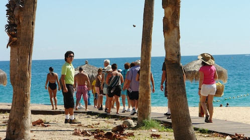 people walking on boardwalk in Los Cabos