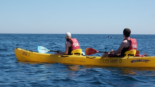 man and woman paddling kayak in Los Cabos