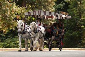 Tour de Stanley Park en un carruaje tirado por caballos