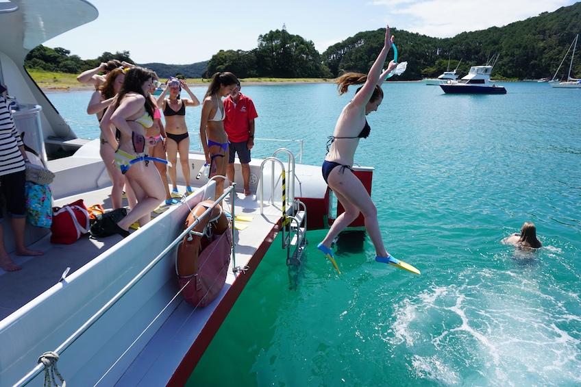 Show item 2 of 9. Bay of Islands Sailing & Wildlife Cruise